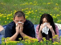 η αλλεργία την άνοιξη